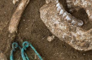 Détail des fibules déposées au niveau du cou d'un sujet masculin,IVes. avant notre ère, Buchères (Aube), 2013.