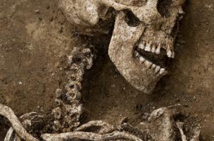 Femme inhumée avec trois fibules, IVes. avant notre ère, Buchères (Aube), 2013.