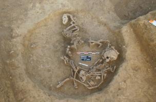 Dépôt de deux enfants et de plusieurs chiens au fond d'un silo, entre 450 et 350 avant notre ère, Obernai (Bas-Rhin), 2013.