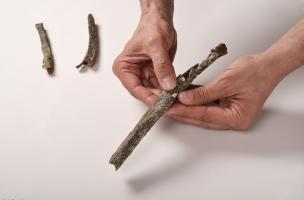 Détail de l'humérus d'un pré-Néandertalienretrouvé sur le site de Tourville-la-Rivière (Seine-Maritime), en 2010, montrant une enthésopathie, anomalie (crête inhabituelle à l'endroit de l'attache du muscle deltoïde).  Cette anomalie résulte, selon toute