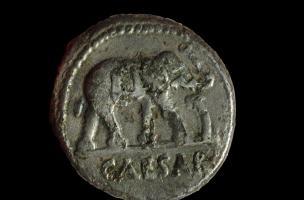 Denier de César à l'éléphant, frappé entre 49 et 48 avant notre ère, mis à jour au Mont Castel à Port-en-Bessin (Calvados), 2014.