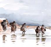 ra4-peuplements-neandertaliens.jpg