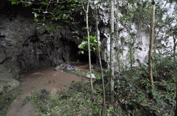 La découverte de l'Homo Luzonensis