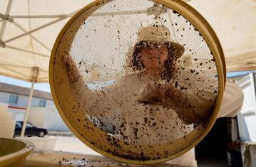 Tamisage à l'eau du mobilier archéologique