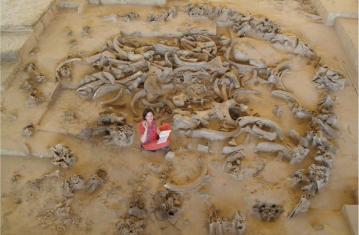 Ma cabane en os de mammouths