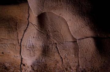 L'état de l'art... préhistorique