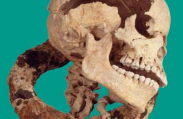 Archéologie de l'esclavage colonial