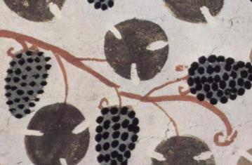 Archéologie de la vigne et du vin