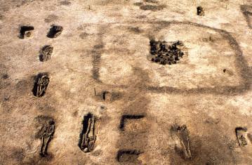 L'âge du Fer en France  - Premières villes, premiers États celtiques