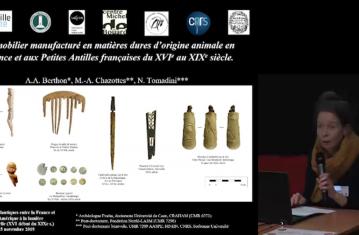 Le mobilier manufacturé en matière dure d'origine animale en France et aux Petites Antilles françaises (XVIe-XIXe s.)