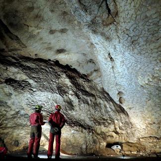 Cette paroi de la salle Dewoitine/Mandement, dans le grotte du Mas d'Azil, est marquée par diverses encoches qui témoignent non seulement de la présence d'une colonie de chauves-souris mais également d'un gros tas de guano qui y fermentait.