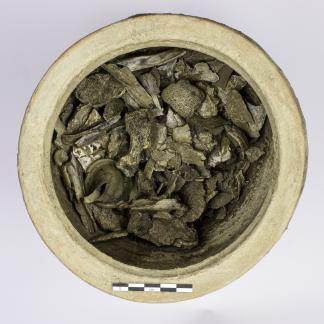 Vase ossuaire en céramique contenant essentiellement des restes osseux d'un individu adulte, ainsi que divers fragments de verre fondu provenant de vases accompagnant le défunt sur le bûcher.