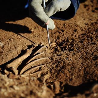 Les sciences et les méthodes de l'archéologie