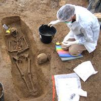 Les sciences de l'archéologie