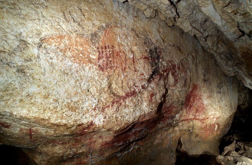 Grand panneau peint oblique de la grotte de Marsoulas (Haute-Garonne)