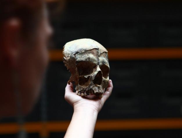 L'archéo-anthropologie funéraire