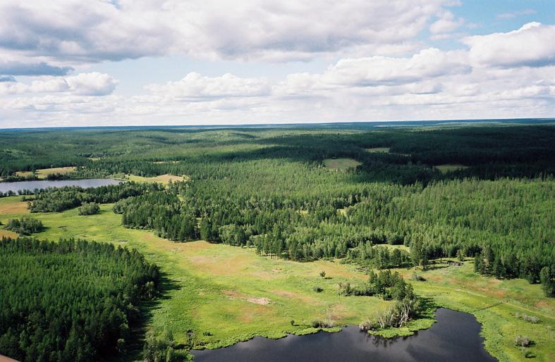 Paysage de la Iakoutie